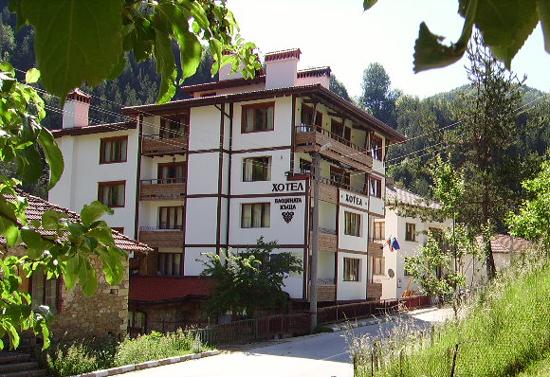 Семеен хотел Бащината къща - с. Могилица, Смолян